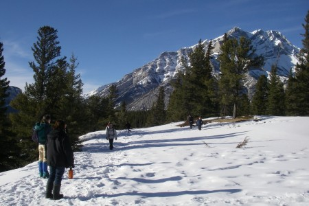 Orienteering at Tunnel Mountain, Banff National Park.